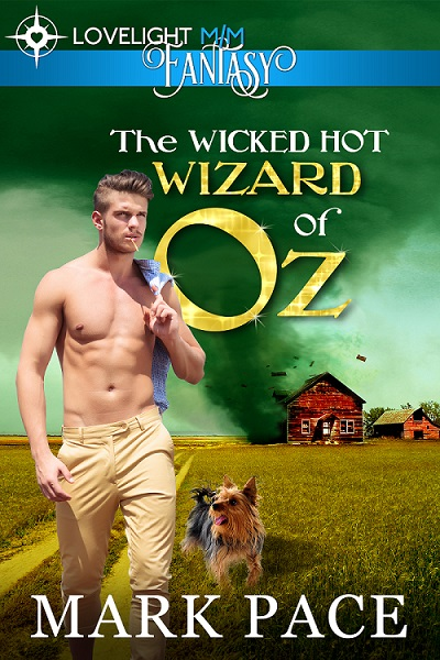 Gay Novel Wicked Hot Wizard of Oz Cover
